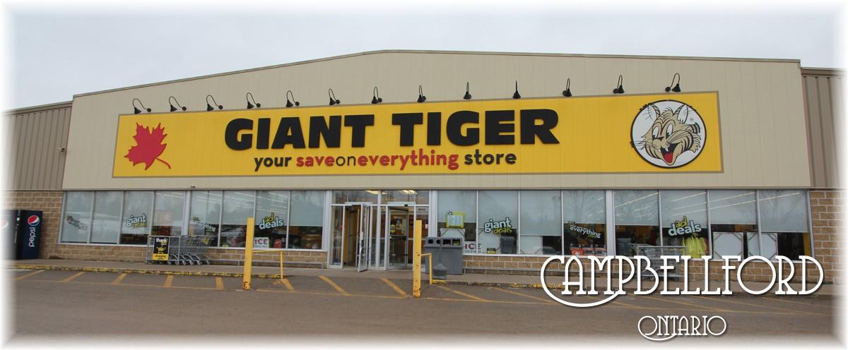 Giant tiger sarnia